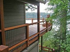 When the time comes I'd love to redo the deck railing with wire mesh.: