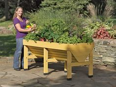 "raised garden, Vegtrug  ""The V-shape makes efficient use of space and planting mix — grow deep-rooted plants like tomatoes in the center, shallow-rooted crops like salad greens along the edges."""