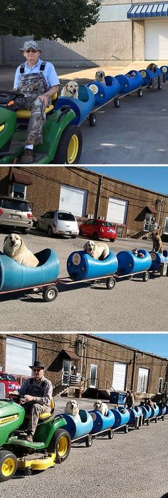 """All aboard the dog train to happy town! Eugene Bosick created a dog train for his 9 rescue pups that he hooks up to his tractor. He takes the dogs for a ride around town twice a week. """"Whenever they hear me hooking the tractor up to it, man, they get so excited,"""" said Bostick. """"They all come running and jump in on their own. They're ready to go."""""""
