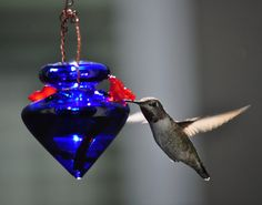 Recycled Material Hummingbird Feeder - Cobalt Blue Color