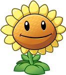 Plants vs Zombies 2 Sunflower by illustation16