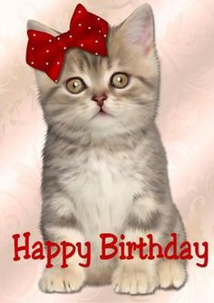 Cute Kitten Happy Birthday in Card Creator Gallery Cat Birthday Wishes, Happy Birthday Greetings Friends, Happy Birthday Art, Happy Birthday Wallpaper, Happy Birthday Friend, Happy Birthday Messages, Happy Birthday Images, Animal Birthday, Birthday Card Pictures