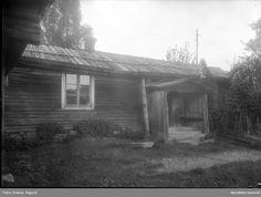 Nordiska museet - Fotograf Erixon, Sigurd Trunks, Plants, Drift Wood, Stems, Tree Trunks, Plant, Planting, Planets