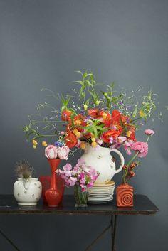 photo janne peters,flowers carola wineberger at saxifraga, production claudia holweg