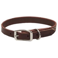 Coastal Pet 02106 B LAT20 Leather Dog Collar, 3/4 by 20-Inch -- Read more at the image link. #DogCollars