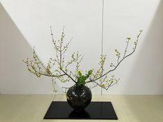 "IKEBANAS - A Arte de vivenciar o Belo : ""A beleza das flores, quando a fixo compenetrado, ..."