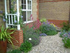 Another example of flowing borders, here with hardy shrubs and some gorgeous plumbago climbing. Small Front Garden Ideas Gravel, Small Front Gardens, Small Front Porches, Front Porch Design, Front Garden Ideas Driveway, Front Path, Porch Designs, Gravel Landscaping, Gravel Garden