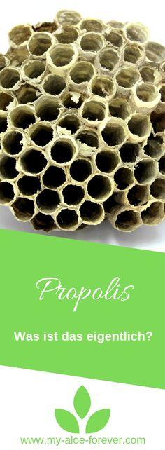 In diesem Artikel erfährst du was Propolis ist. Wie es wirkt und wozu es angewendent werden kann.   Propolis wird auch Stopfwachs, Bienenharz, Bienenleim, Kittharz oder Kittwachs genannt und ist eine von Bienen hergestellte harzartige Masse mit antibiotischer, antiviraler, antimykotischer und immunstimulierender Wirkung. Es wird in verschiedene Formen angeboten, z. B. als Tinktur, Salbe oder Pulver. Das Naturheilmittel kann innerlich und äußerlich angewendet werden. Lese weiter auf dem Blog... Propolis, Forever Living Products, Allergies, Blog, Home Remedies, Different Shapes, Natural Remedies, Bees, Blogging