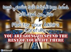 Plan for your Akhira.