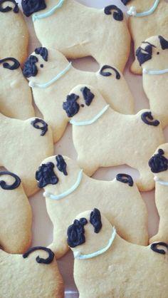 Pug biscuits