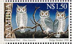 Northern White-faced Owl stamps - mainly images - gallery format