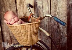 Newborn vintage bicycle .... by Beth Forester