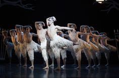 The sublime swans envisioned by Matthew Bourne and designed by Lez Brotherson. I was already an admirer of their work, and was so delighted to be able to work with them.
