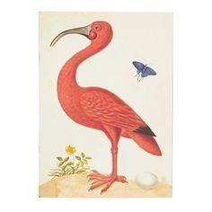 Notebook Flamingo, Multi, medium