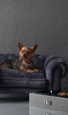 Accented with crystal buttons and deep tufting, this luxurious velvet pet bed will make any dog feel like a royalty.