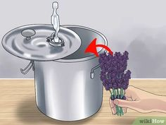 Image titled Make Essential Oils Step 14 Making Essential Oils, Doterra Essential Oils, Herbal Remedies, Home Remedies, Essential Oil Distiller, Esential Oils, Savon Soap, How To Make Oil, Natural Cosmetics