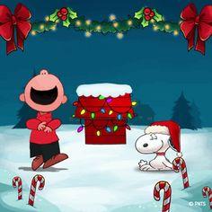 Merry Christmas Gif, Peanuts Christmas, Charlie Brown Christmas, Charlie Brown And Snoopy, Christmas Scenes, Christmas Quotes, Christmas Wishes, Christmas Greetings, Christmas Humor