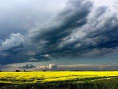 ***Storm Warning (Manitoba) by Manitoba Prairie Girl / Landscape Photos, Landscape Art, Landscape Paintings, Landscape Photography, Nature Photography, Skier, Quelques Photos, Dark Skies, Storm Clouds