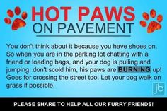 Hot Paws on Pavement