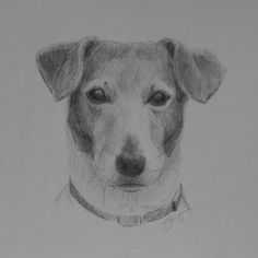 silverpoint and color pencil | Atlanta Portrait Artist Lisa Gleim-Silverpoint Drawings