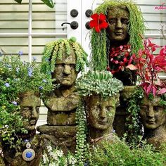 Gardening with Succlents.  What a cool idea!  See anyone you know??