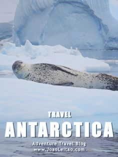 Antarctica Best Destinations, Nomad Revelations Travel Blog