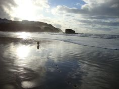 Paw prints in the sand at Perranporth, Cornwall The Beautiful South, Devon And Cornwall, Paw Prints, Water, Outdoor, Gripe Water, Outdoors, Outdoor Living, Garden