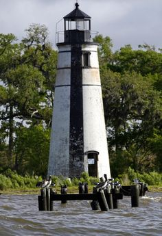 National Lighthouse Day: Here are 10 stunning photos of the Madisonville beacon | NOLA.com