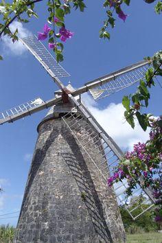 Le Moulin de Bézard, Marie-Galante, Guadeloupe Marie Galante, Water Island, St Vincent Grenadines, Caribbean Art, Le Moulin, Windmills, West Indies, Island Life, Beautiful Islands