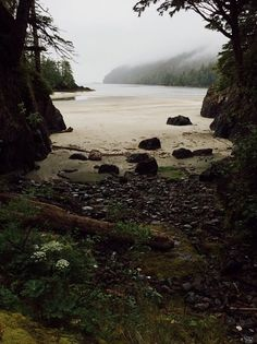San Josef Bay, Cape Scott Provincial Park, BC