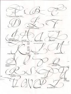 Copperplate Calligraphy, Calligraphy Handwriting, Calligraphy Letters, Penmanship, Caligraphy E, Learn Calligraphy, Cursive Alphabet, Hand Lettering Alphabet, Fancy Fonts Alphabet