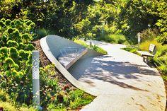Tongva Park, James Corner Field Operations, Ken Genser Square, Santa Monica, landscape architecture, urban park