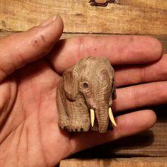 Gorgeous and cute...!! Credit : @meysamshalviri - . #elephant #elephants #elephantlove