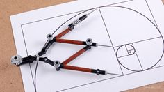 Golden Ratio Calipers — BrickNerd - Your place for all things LEGO and the LEGO fan community