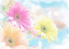 Pastel Roses | pastel roses photo 2Flower-Art-Daisy-Colorful-2-1600x1.jpg