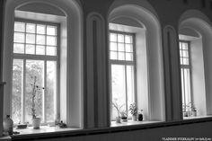 Samara, Konstantin Golovkin's Villa (Cottage with elephants), project of Golovkin and architect V. Samara, Elephants, Villa, Cottage, Windows, Curtains, Architecture, Projects, Home Decor