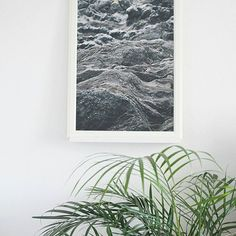 """""""Moon"""" print available on @society6 in many sizes. Add a dreamy landscape to your home!  Find it at : https://society6.com/product/moon-29a_print#1=45  #willwild #society6 #promo #artist #design #moon #landscape #graphicartist #designlife #print #art #plant #explore #b&w #home #interior #homedecor #interiordesign #wallart"""