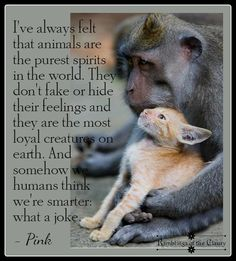 "For being created ""in the image of God"" we humans have too often, treated other living beings in such terrible and horrific ways."
