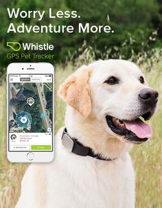 Never Lose Your Pet Again. Find your pet in minutes, not days with America's #1 GPS Pet Tracker.