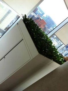 This is how Urban Planters help deal with poor air quality within offices in Manchester....