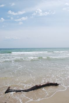 Malaquite Beach Padre Island National Seas Nps Photo