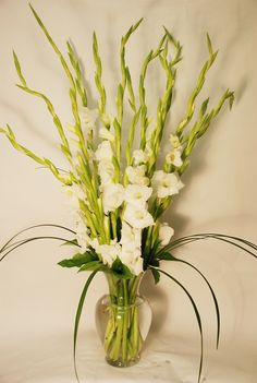 lorious Gladiolus - Fifteen Gorgeous Gladiolus fill a classic clear vase and makes for a Perfect Arrangement for any occasion or event! Available in All White or Mixed Color