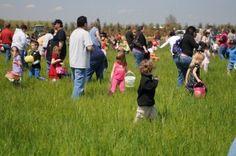 Easter Egg Hunt @ Bauman Farms