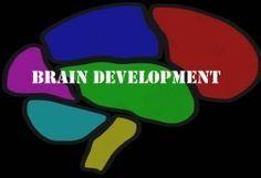 Brain Development Lessons & Activities for Child Development
