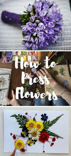 A Wedding Season Must How To Press Flowers is part of Pressed flower crafts - Discover how to press flowers at home, so you can make the most of your wedding flowers this year and for many years to come! Pressed Flowers Frame, Dried And Pressed Flowers, Pressed Flower Art, Flower Frame, Flower Crafts, Diy Flowers, Wedding Flowers, Press Flowers, Flower Diy