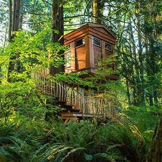 """TreeHouse Point -- Issaquah, WA Number of rooms: Six (including Trillium, The Upper Pond, and The Temple of the Blue Moon) Cost per night: From $195 Height off the ground: A couple of stories at most, accessible by ladders or stairs Why stay? The work of a """"world-renowned treehouse builder"""", this B&B just outside Seattle boasts rustic-but-modern cabins decorated with leather chairs, cedar beds, and private balconies."""