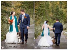 Kananaskis wedding photographer, banff wedding photographer, bride and groom outdoor portraits, bride and from with their dog, www.kimpayantphotography.com