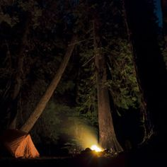 Into the wild night... #Camping