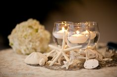 Starfish & Shell Centerpiece Details