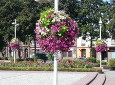 flower boxes for city lanterns Jiflor Flower Tower, Landscape Elements, Urban Furniture, Towers, Flower Pots, Teak, Lanterns, Sidewalk, Poland